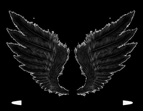 Pin By Uggzyn 3 On Png Wings Png Angel Wings Png Black Wings