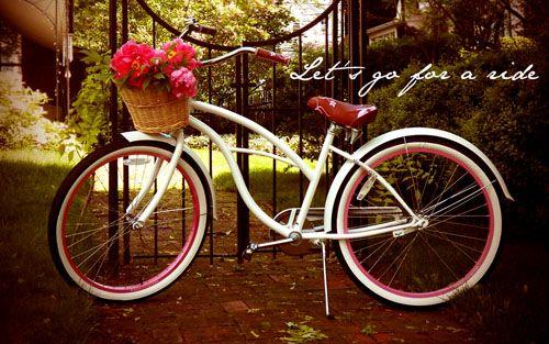 Ljcfyi Bike Desktop Wallpapers Bicycle Wallpaper Bike With Basket Desktop Wallpaper Bicycle wallpapers images photos