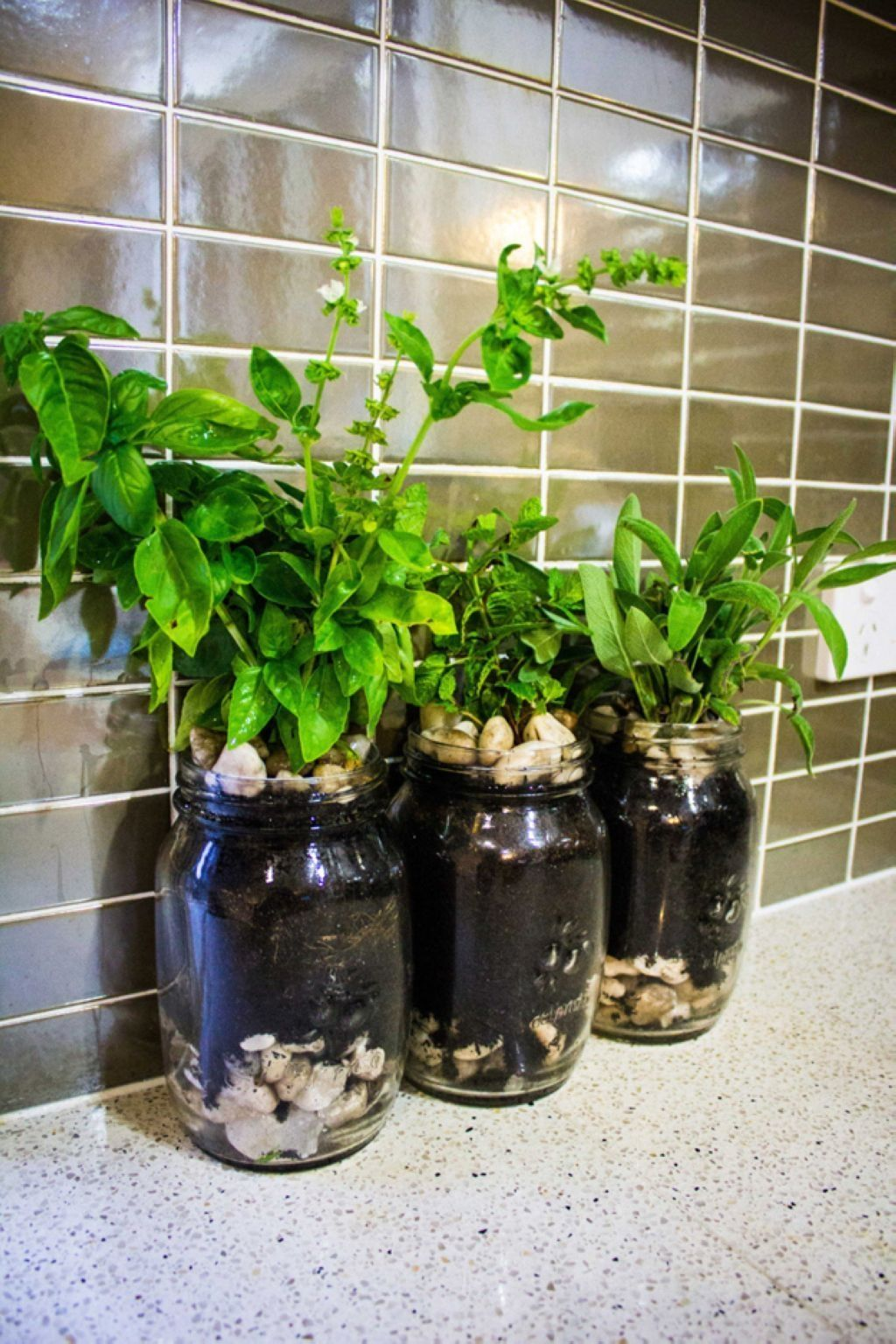 39 DIY Indoor Garden Ideas for Small Spaces Decoration | Small ...