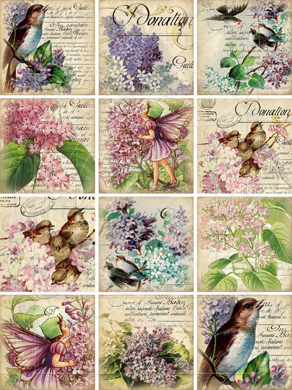 INSTANT DOWNLOAD diGiTal CollaGe Sheet ViNtaGe EpheMera ViCtorIaN FloRal WaLLpaPer BaCkgRounNDs vICToRiAn biRdS pRintableS, No. 81