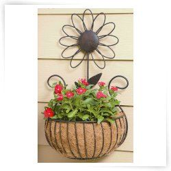 Outdoor Wall Plant Hangers Plantopia