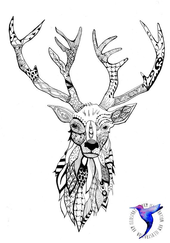 Zentangle Stag Head Screen Print Sketches Pinterest Siebdruck