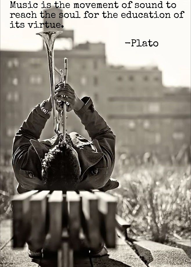 Music is the movement of sound to reach the soul for the education of its virtue - Plato