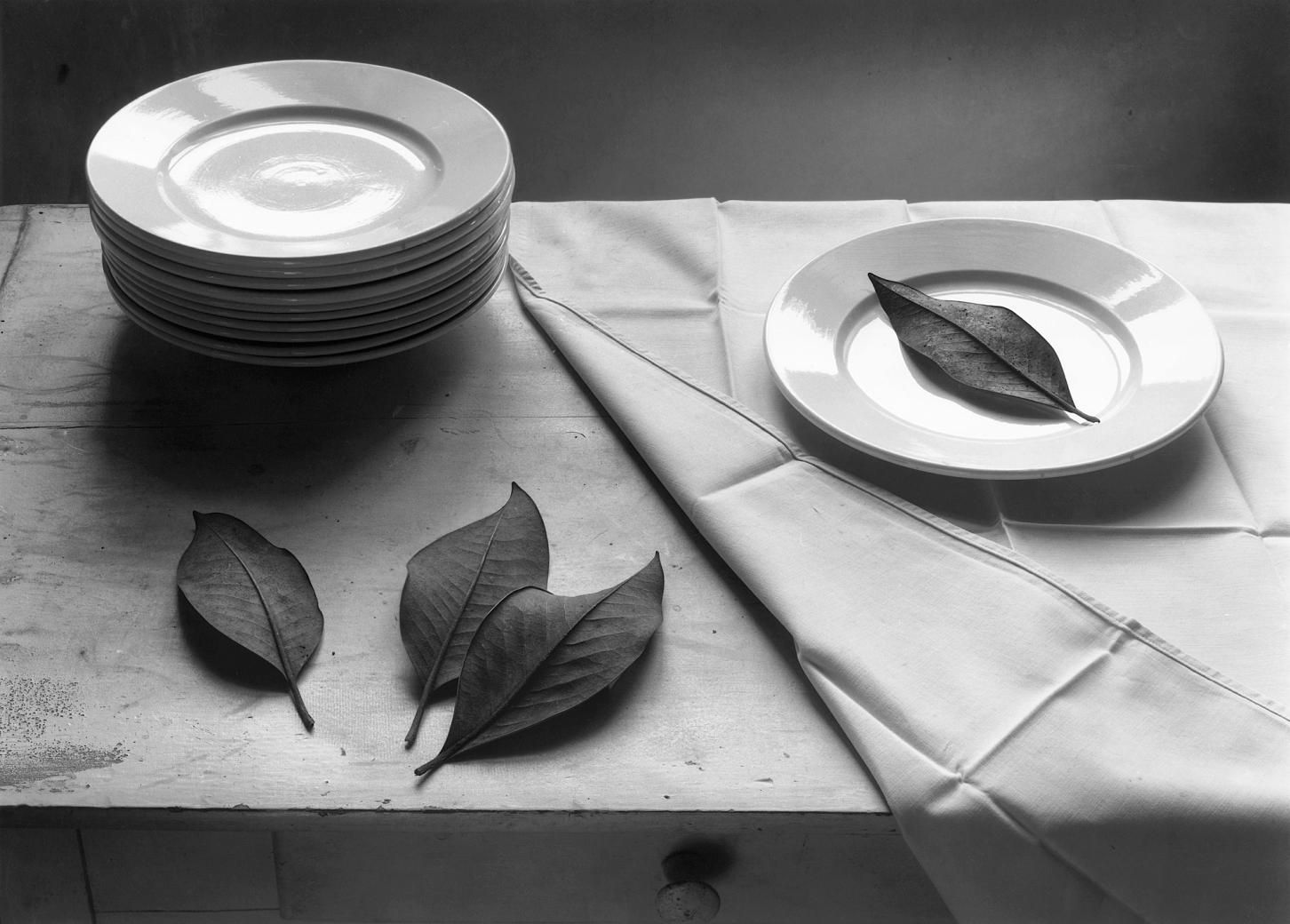 Famous Black And White Still Life Photography