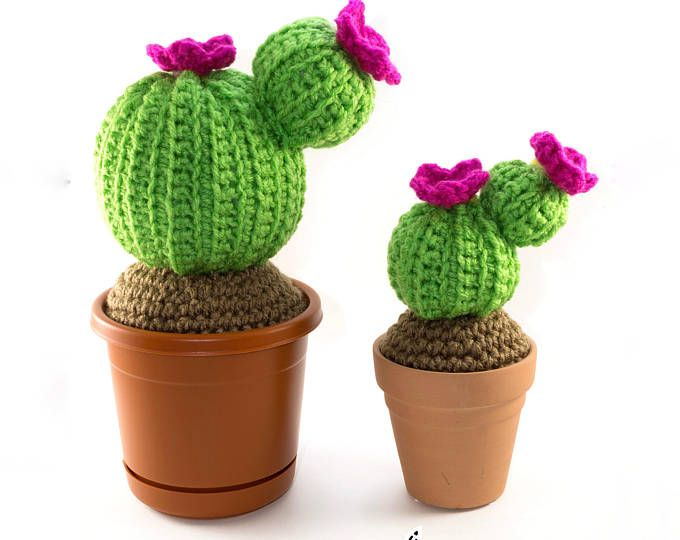 anygurumi: CACTUSMANIA   Cactus planta, Cactus, Tejidos a crochet   540x680