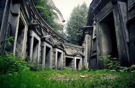 Image result for abandoned transilvanian homes