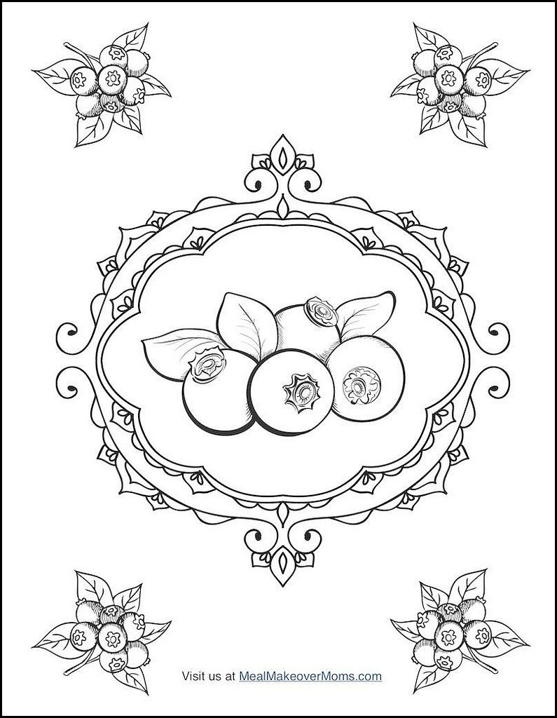blueberry bush coloring page coloring pages pinterest