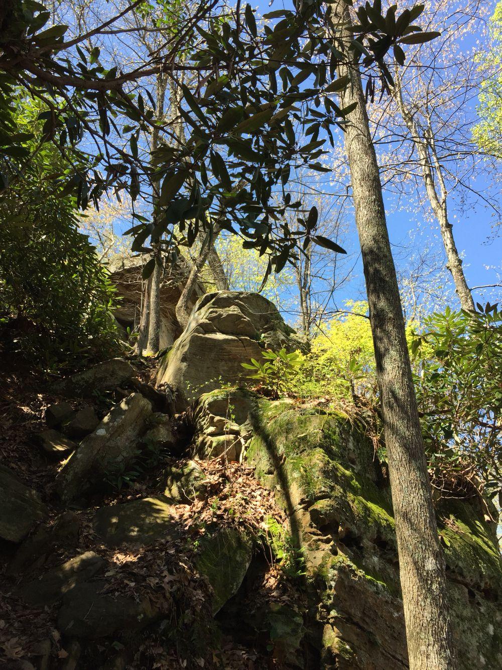 Amburgy Rock