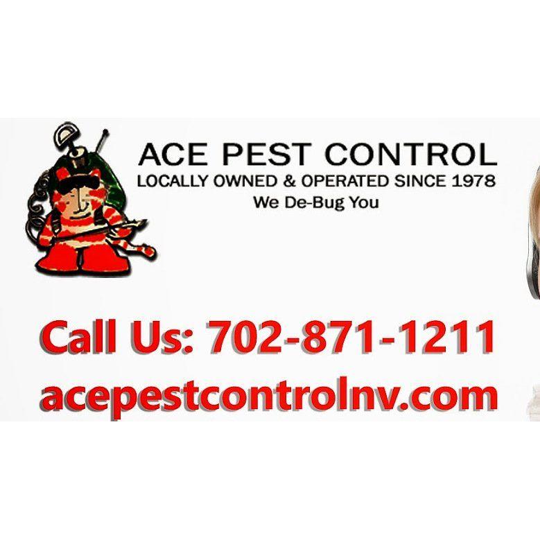 Ace Pest Control Photos Pest Control Photo 47