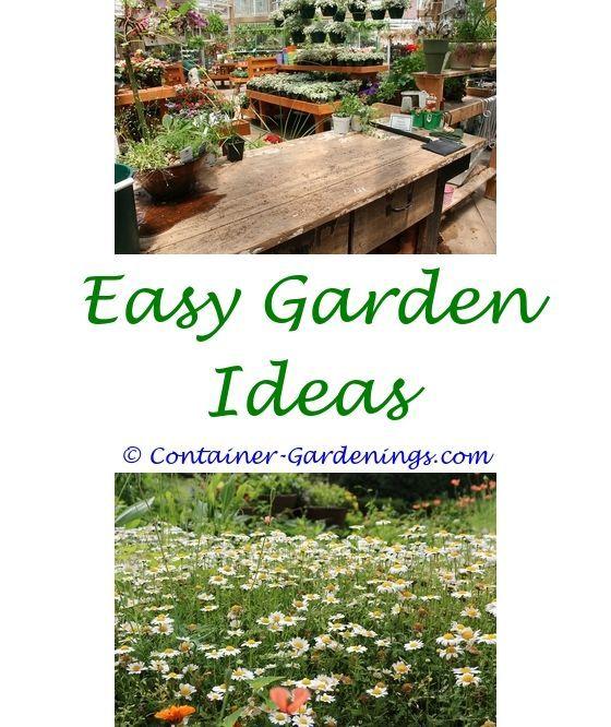 Gargen plants vs zombies garden warfare cactus tips - cold frame ...