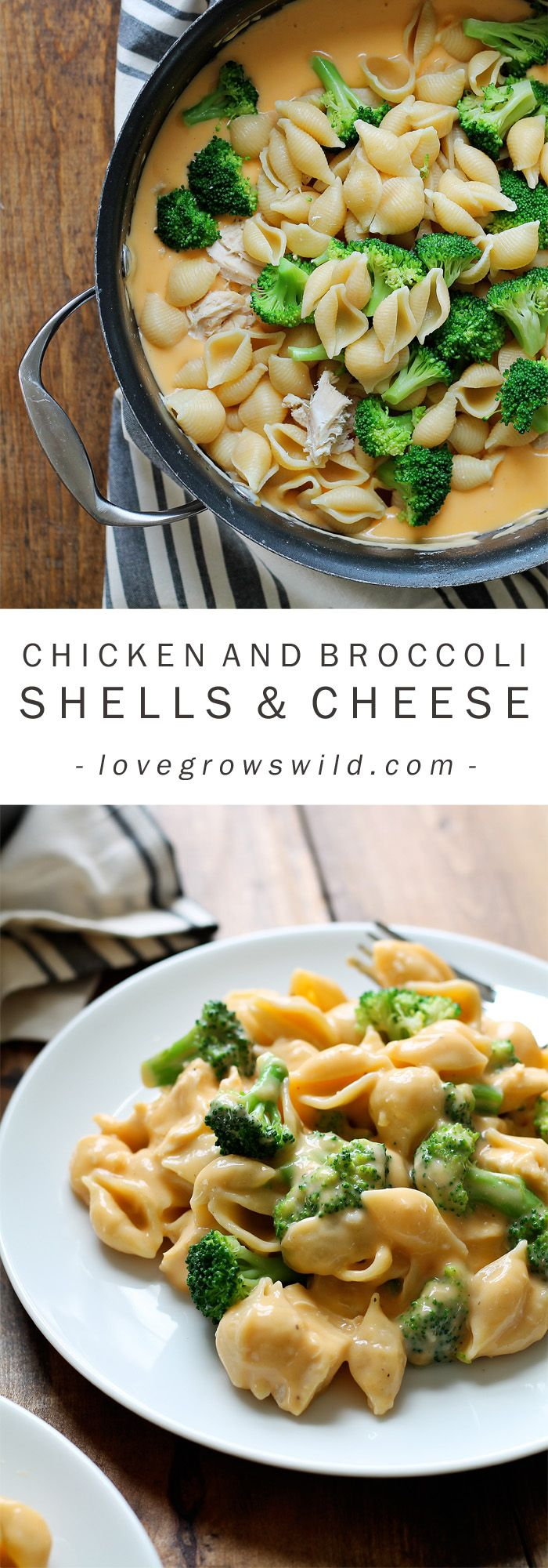 Perfectly creamy homemade shells and cheese made with chicken and broccoli. Everyone loves this easy weeknight meal! Get the recipe at LoveG...