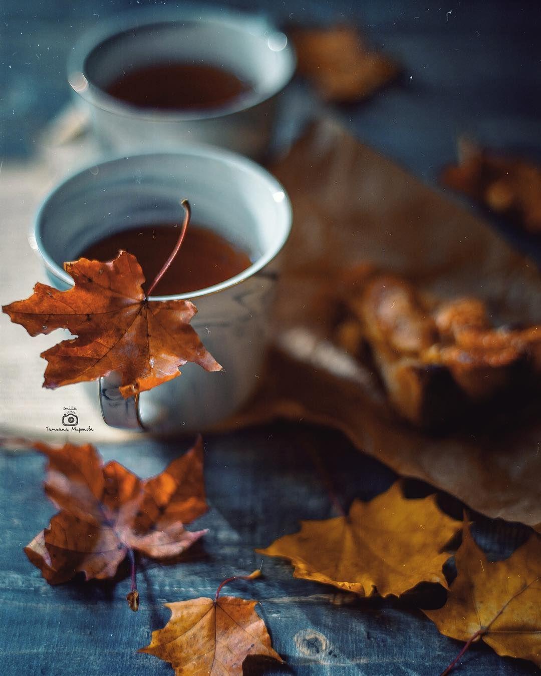 картинки осень кофе листья понять, что