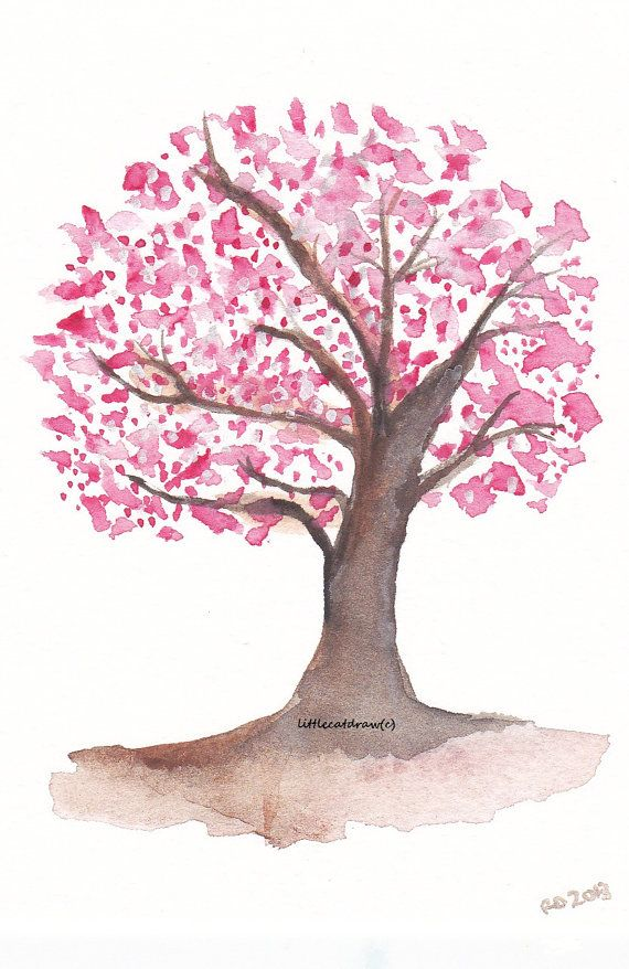 Sweet Cherry Blossom Tree Watercolor Painting Art Print