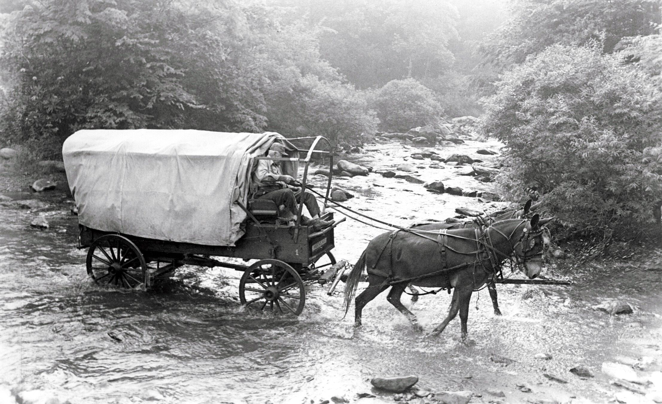 Wagon Trains and Indians Wagon Train Old West