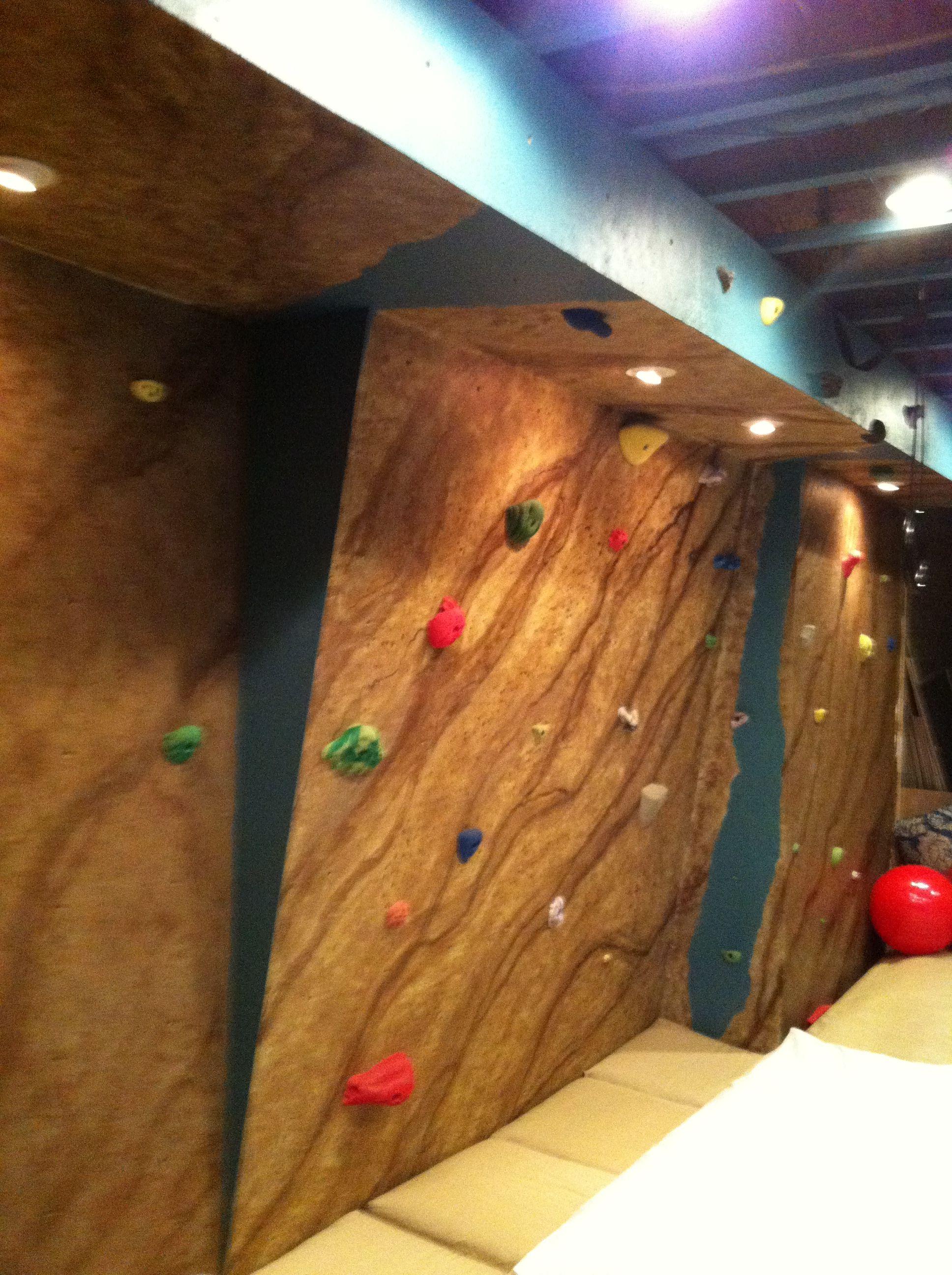 Build A Climbing Wall Book Diy Climbing Wall Climbing Wall Kids Climbing