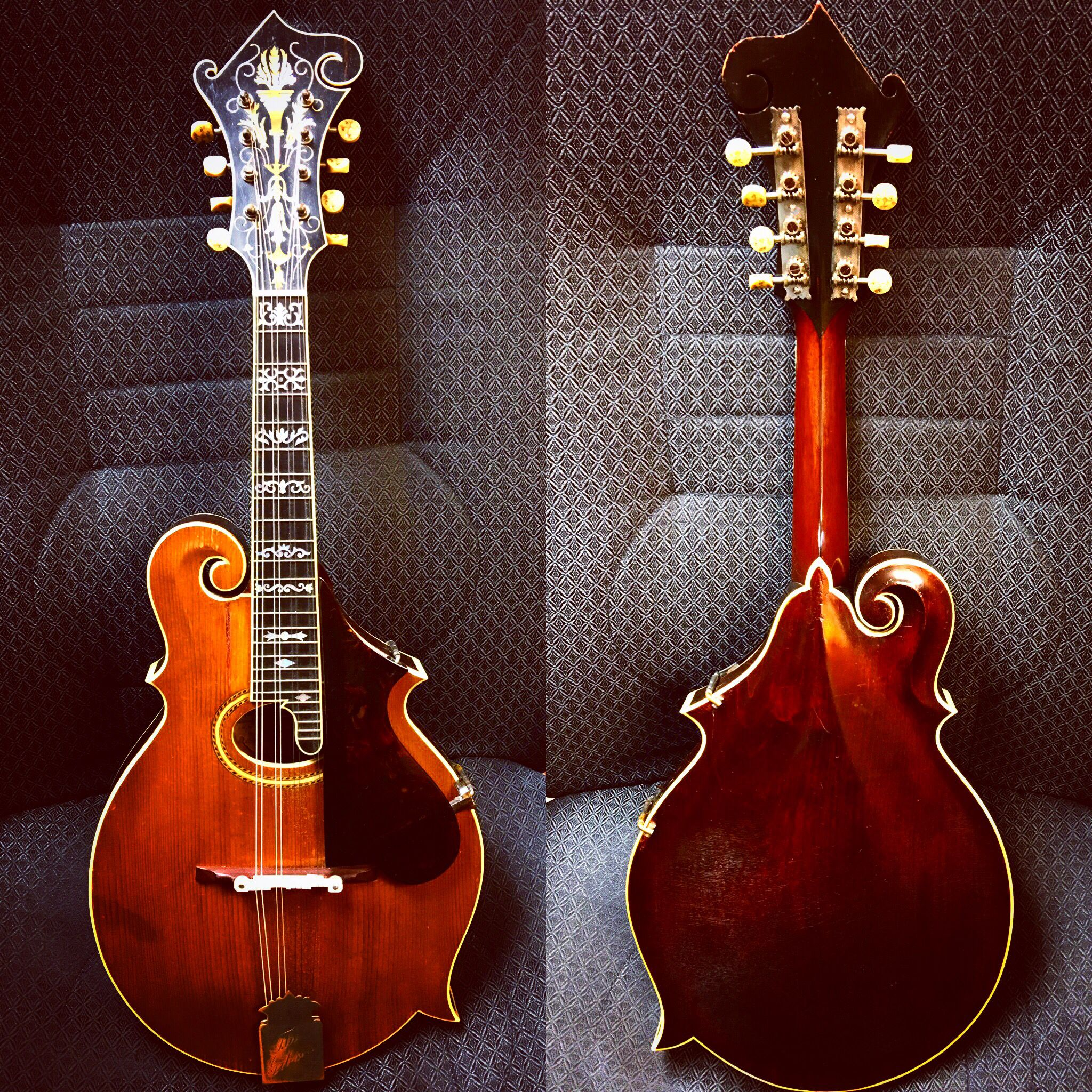 1909 gibson f4 mandolin torch and wire inlay on peghead artist model banjo style inlay. Black Bedroom Furniture Sets. Home Design Ideas