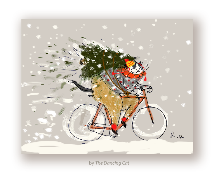 Cycling Christmas Cat Card