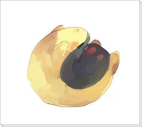 Quilava Pokemon Pinterest Pok 233 Mon And Anime