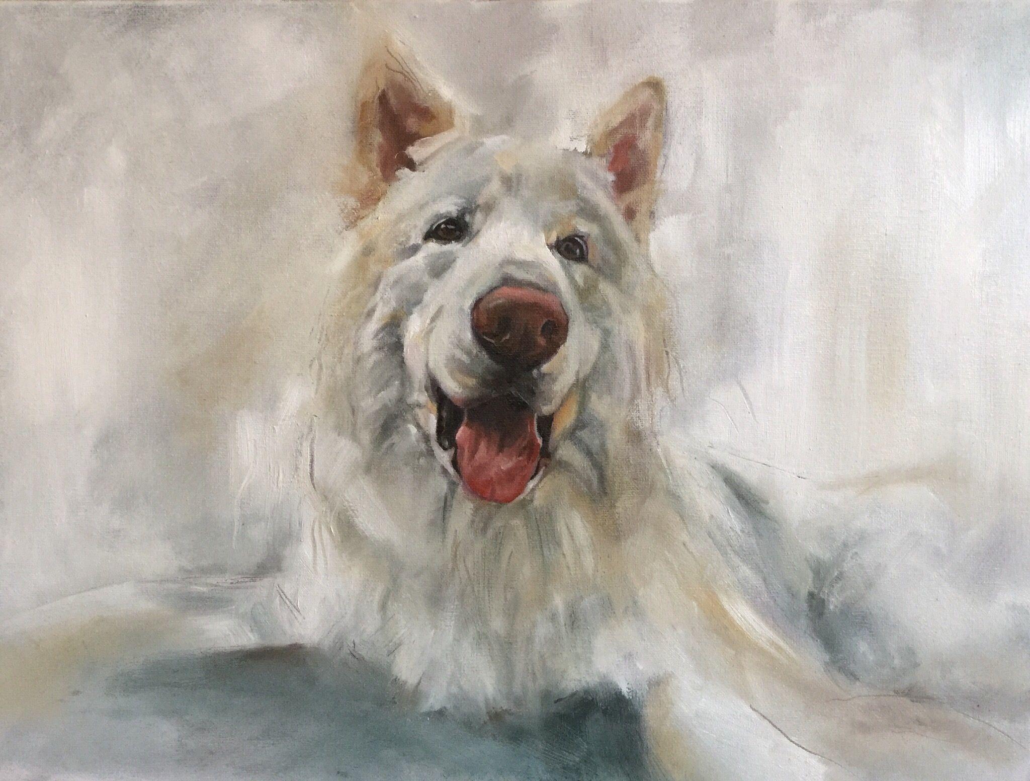 "'Apollo' 16""x12"" oil on canvas by Julie Brunn"