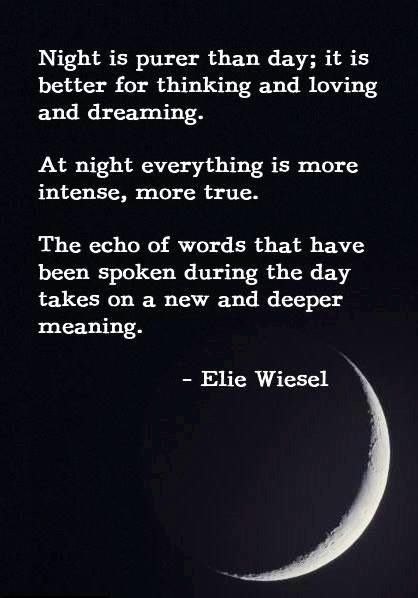 Night By Elie Wiesel Quotes With Page Numbers Fascinating Night  Elie Wiesel  Unit Plans  Pinterest  Elie Wiesel Books