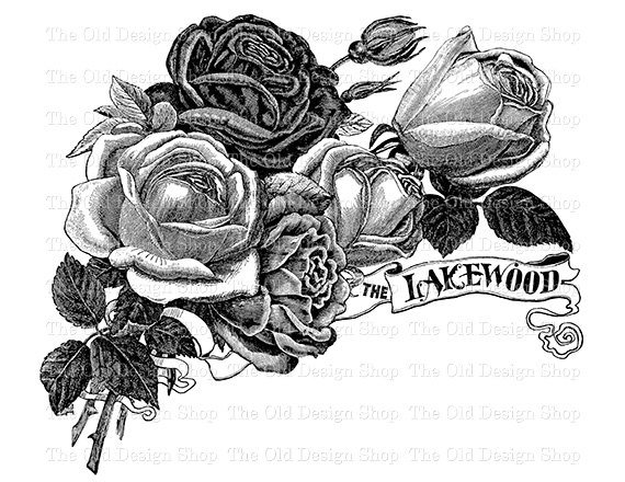 Vintage Rose Clip Art Instant Download Lakewood Roses Printable