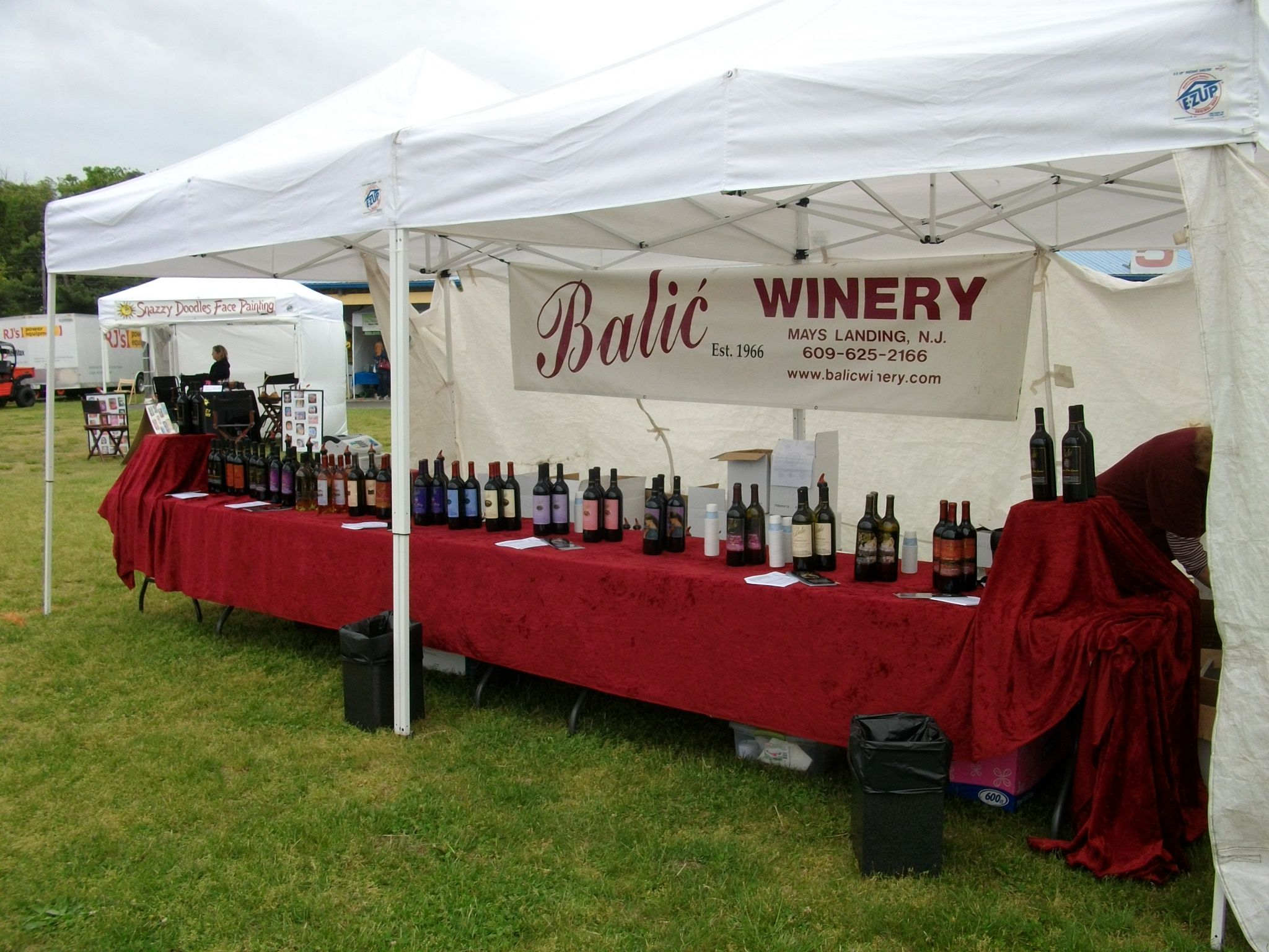 Wine Sampling At The Festival By Balic Winery Wine Samples Winery Wine