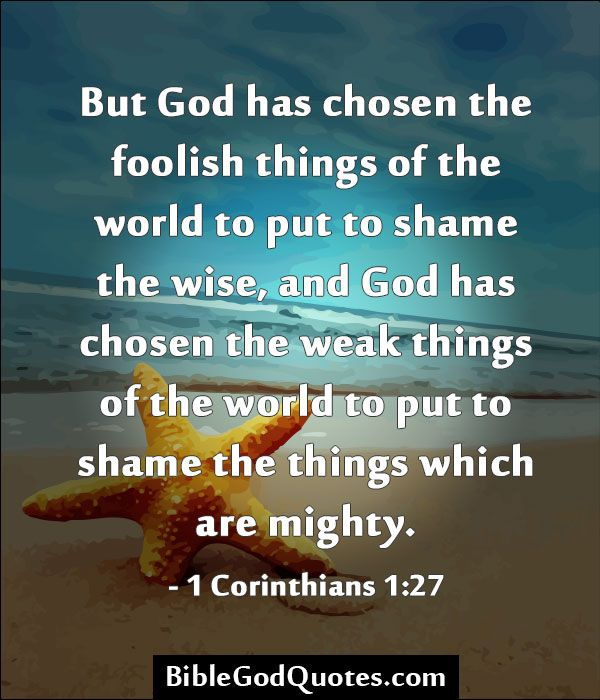 Image result for 1 corinthians 1:28-29 kjv