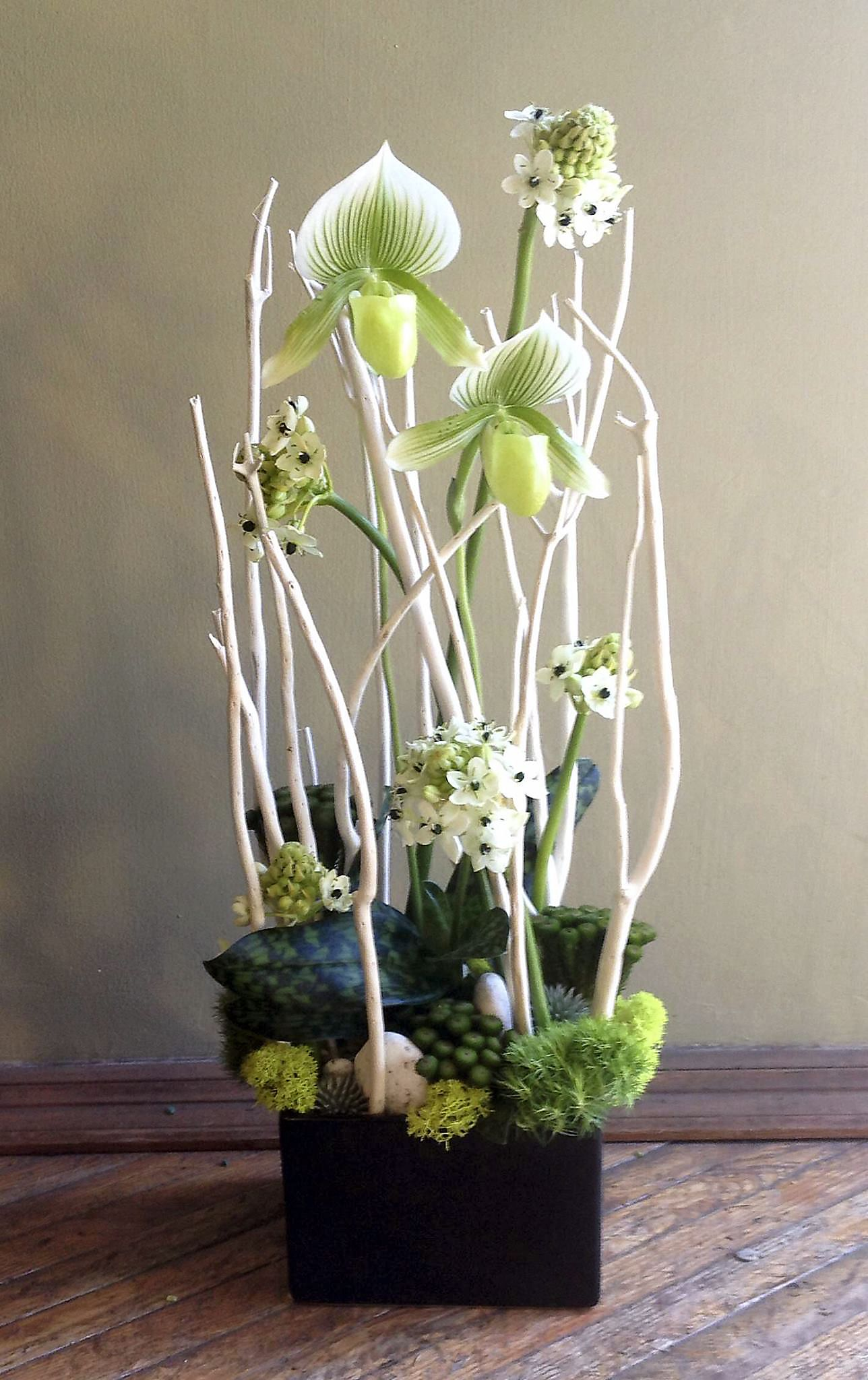 An arrangement of ladyslipper orchids arabicum brunia for Floral arrangements with branches