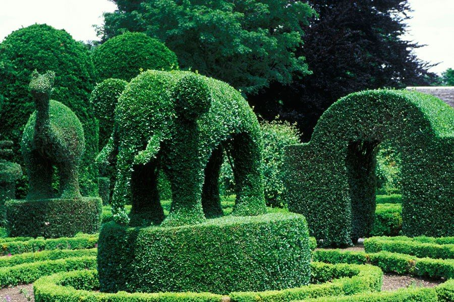 The Best Public Topiary Gardens Topiaries Topiary Garden And Portsmouth