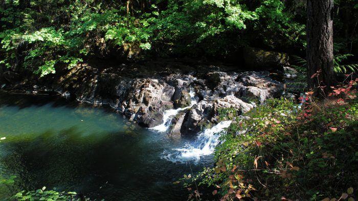 7. Cavitt Creek Falls