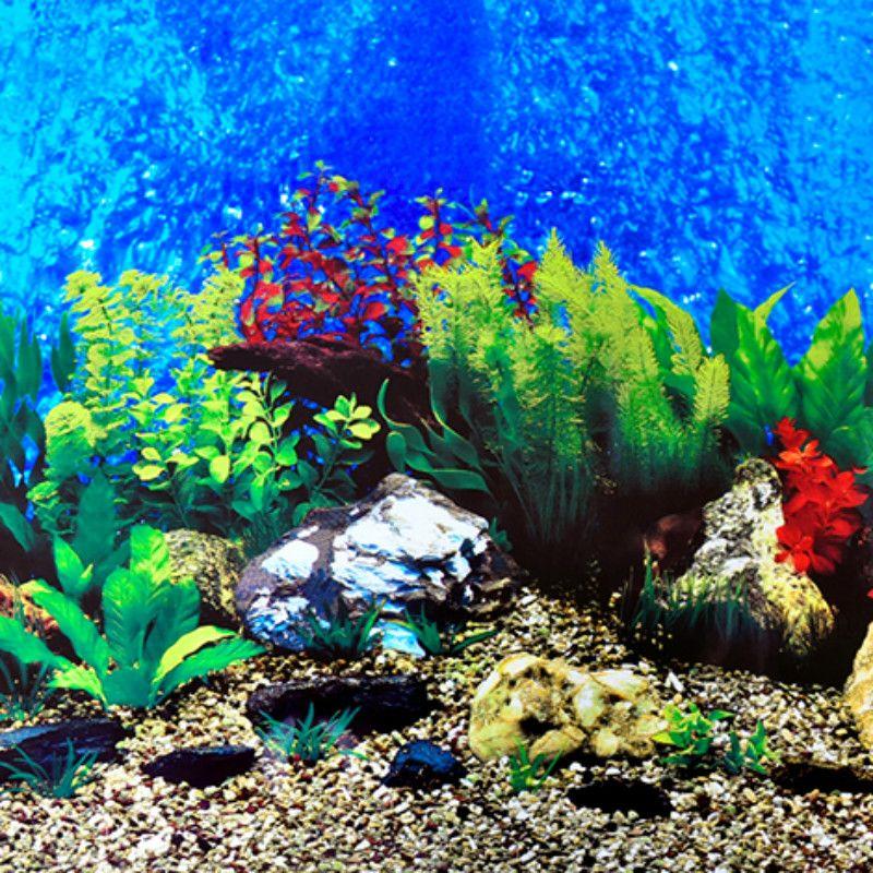 Aquarium Live Wallpaper For Pc Aquarium Live Wallpaper Live Wallpaper For Pc Wallpaper Pc