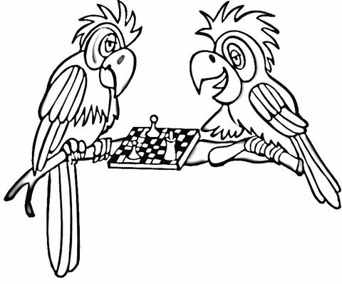 Chess Coloring Pages Satranç Coloring Pages Chess Ve Color