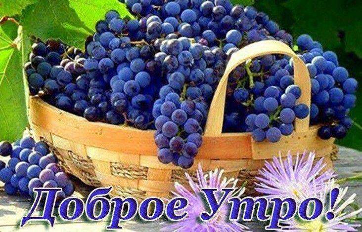 Пин от пользователя Inna Ivachenko на доске пожелания ...