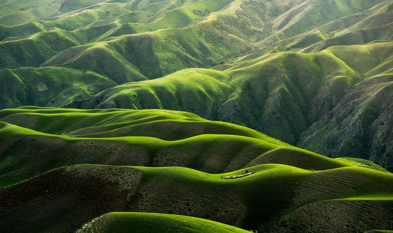 Download This Photo By Qingbao Meng Ideasboom Yining China Nature Images Nature Wallpaper Green Nature