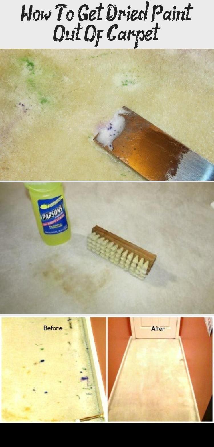 How To Get Dried Paint Out Of Carpet Diy Projects Can Get Messy These Steps Got Old Paint Out O Carpet Cleaning Pet Stains How To Clean Carpet Carpet Stains