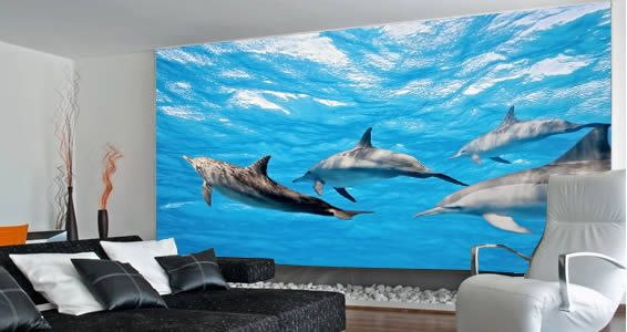 Take a tour underwater with our dolphins wall paper let for Dolphin mural wallpaper
