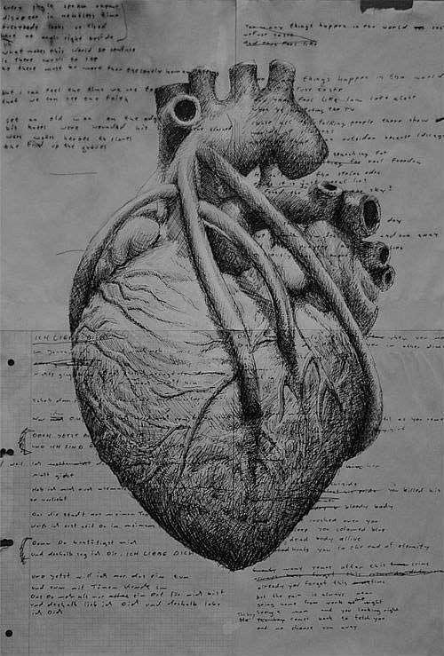 Real Heart Tattoo Designs   Zentangle   Pinterest