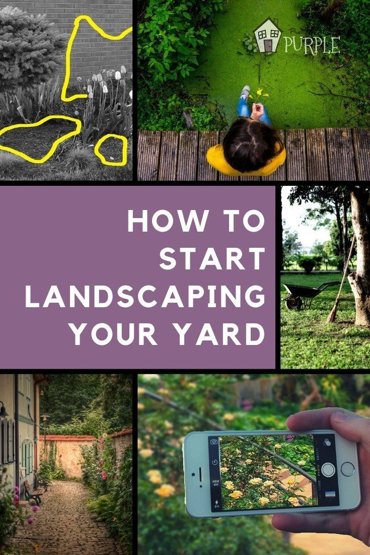 4 Steps to Improve Your Landscaping (For Beginners) | Pretty Purple Door