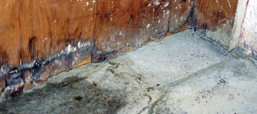 Concrete Floor Water Damage Repair An Overview Of The Process Water Damage Repair Damage Restoration Concrete Floors