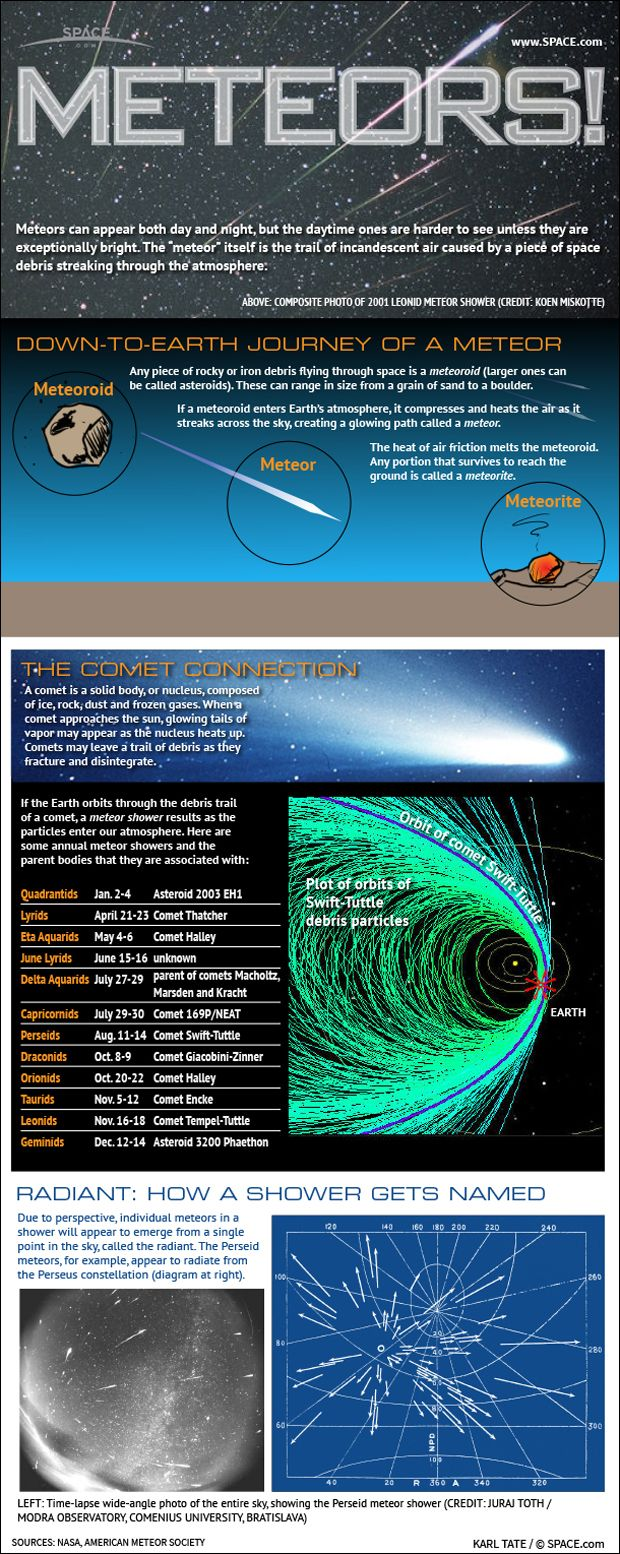 Learn why famous meteor showers like the Perseids and Leonids occur every year [See the Full Infographic Here].