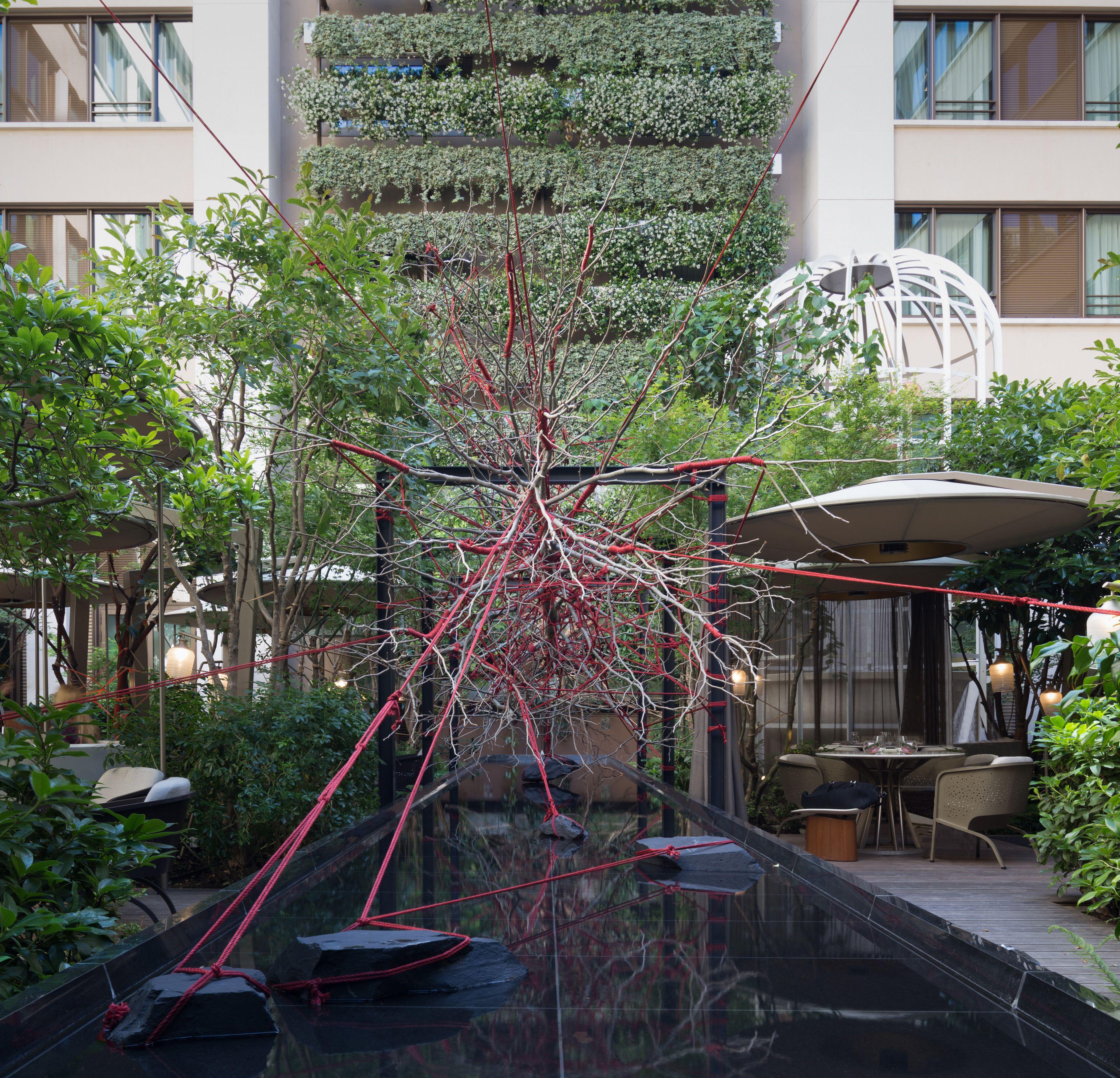 Jardins Terrasses Hotel Mandarin Oriental Paris Concepteur
