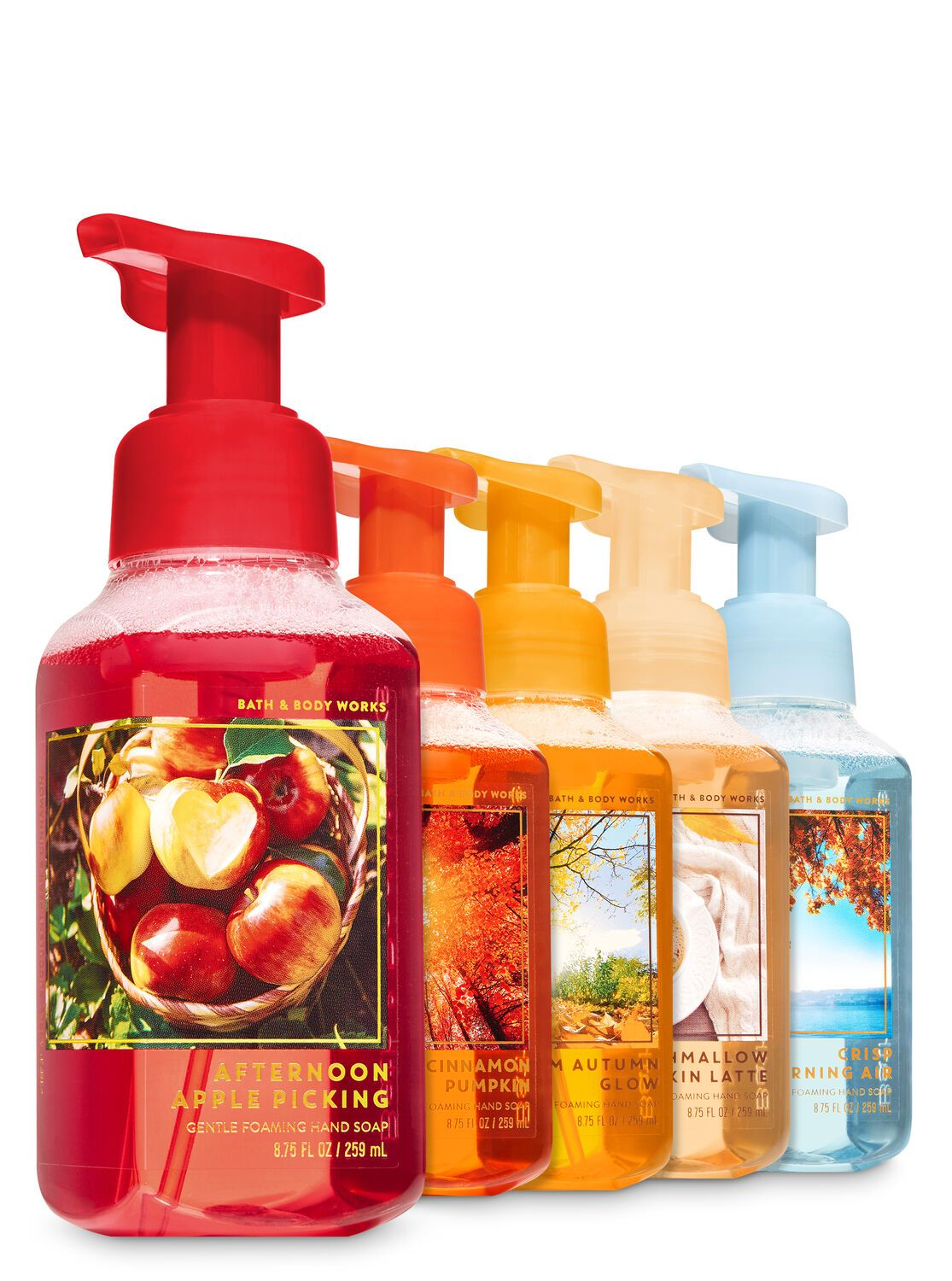 Bath Body Works Fall Traditions Gentle Foaming Hand Soap 5 Pack