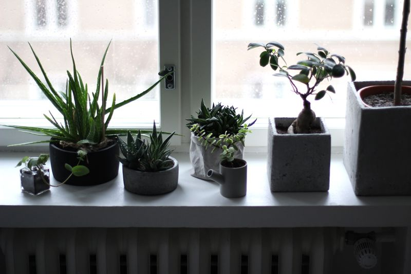 HERE LIVES SAARA  |  LIVING ROOM   KITCHEN
