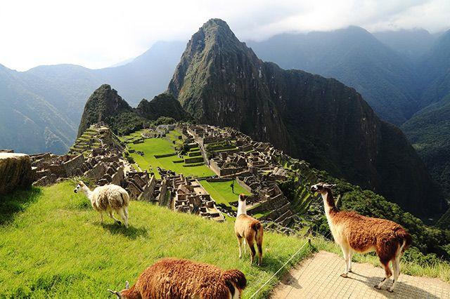 Peru - Auf den Spuren der Inka-Entdecken Sie Südamerika! Peru liegt im Westen des Kontinents und hat etwa 30 Millionen Einwohner. Das Wahrzeichen des Landes, die weltberühmte Ruinenstadt Machu Picchu, ist eine Sehenswürdigkeit, die man auf keinen Fall verpassen sollte! Sie wurde im 15. Jahrhundert von den Inka auf einem Bergrücken erbaut.