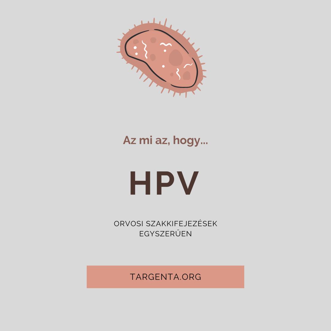 emberi papillomavírus háttér