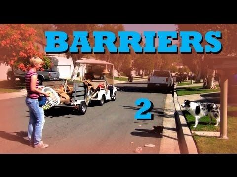 Invisible Barriers Part 2 Clicker Dog Training Tricks Dog