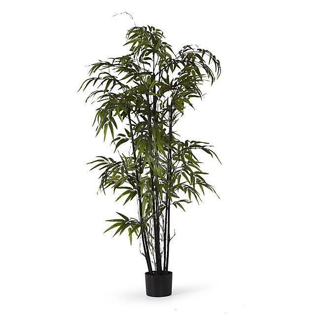 les 25 meilleures id es de la cat gorie bambou artificiel sur pinterest plantes artificielles. Black Bedroom Furniture Sets. Home Design Ideas