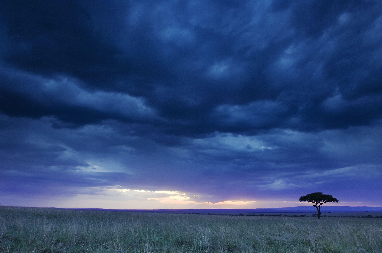 Located in the Olare Orok Conservancy - Masai Mara, Porini Lion Camp offers an exclusive African Safari experience