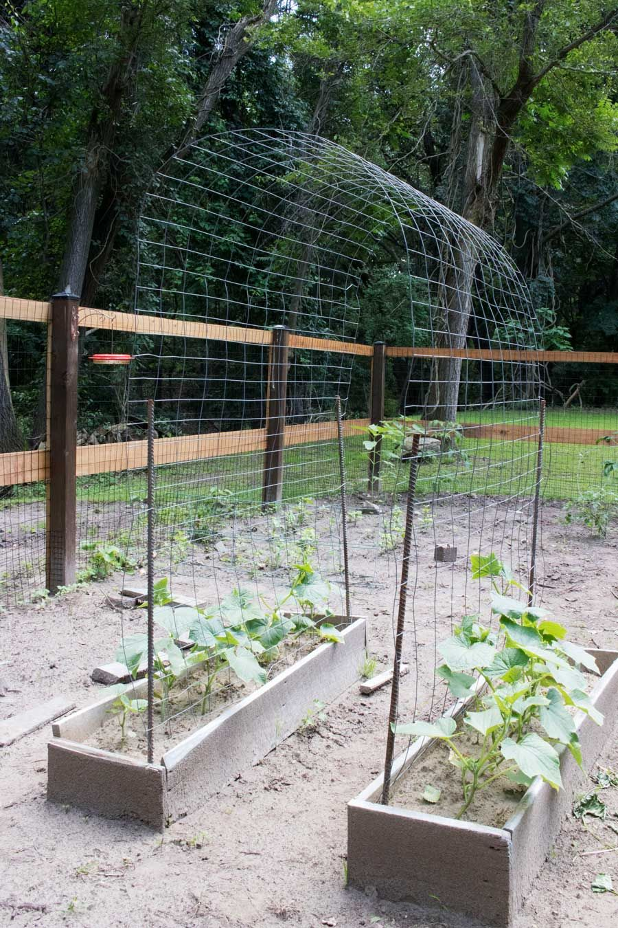 Building the Perfect Garden Archway Trellis