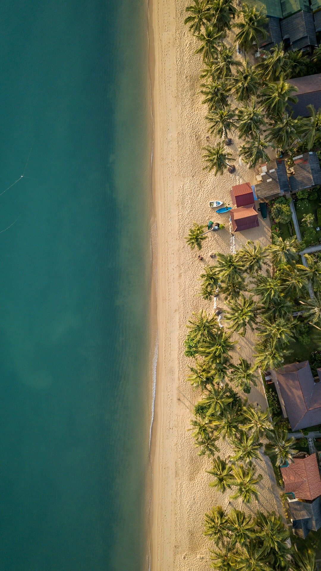 Aerial Photography Of The Ocean Shore And The Beach Dronephotography Nature Iphone Wallpaper Aerial Photography Nature Photography Drone aerial shot trees beach coast